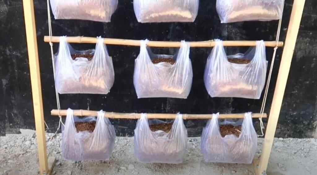 foto 3 5 – Простой способ выращивания зелени: вертикальные грядки из пакетов (с капельным поливом)