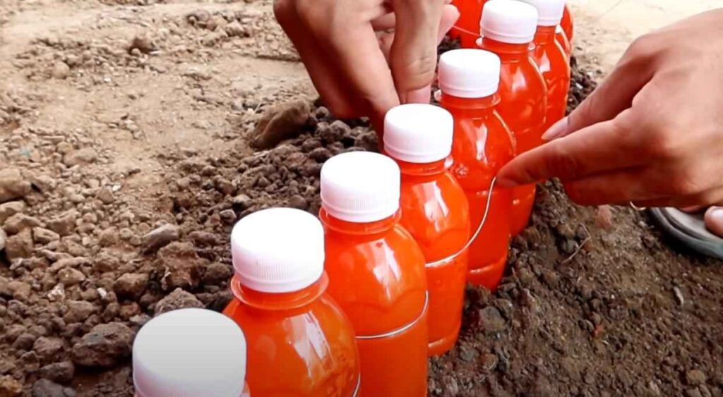foto 5 – Цветочная клумба из пластиковых бутылок