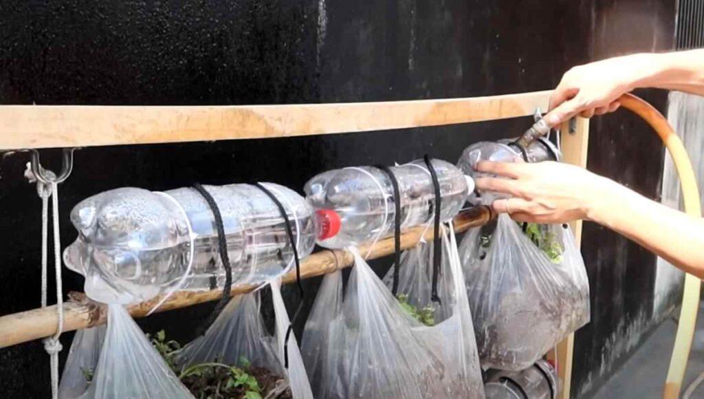 foto 9 3 – Простой способ выращивания зелени: вертикальные грядки из пакетов (с капельным поливом)