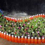 na prevyu – Цветочная клумба из пластиковых бутылок